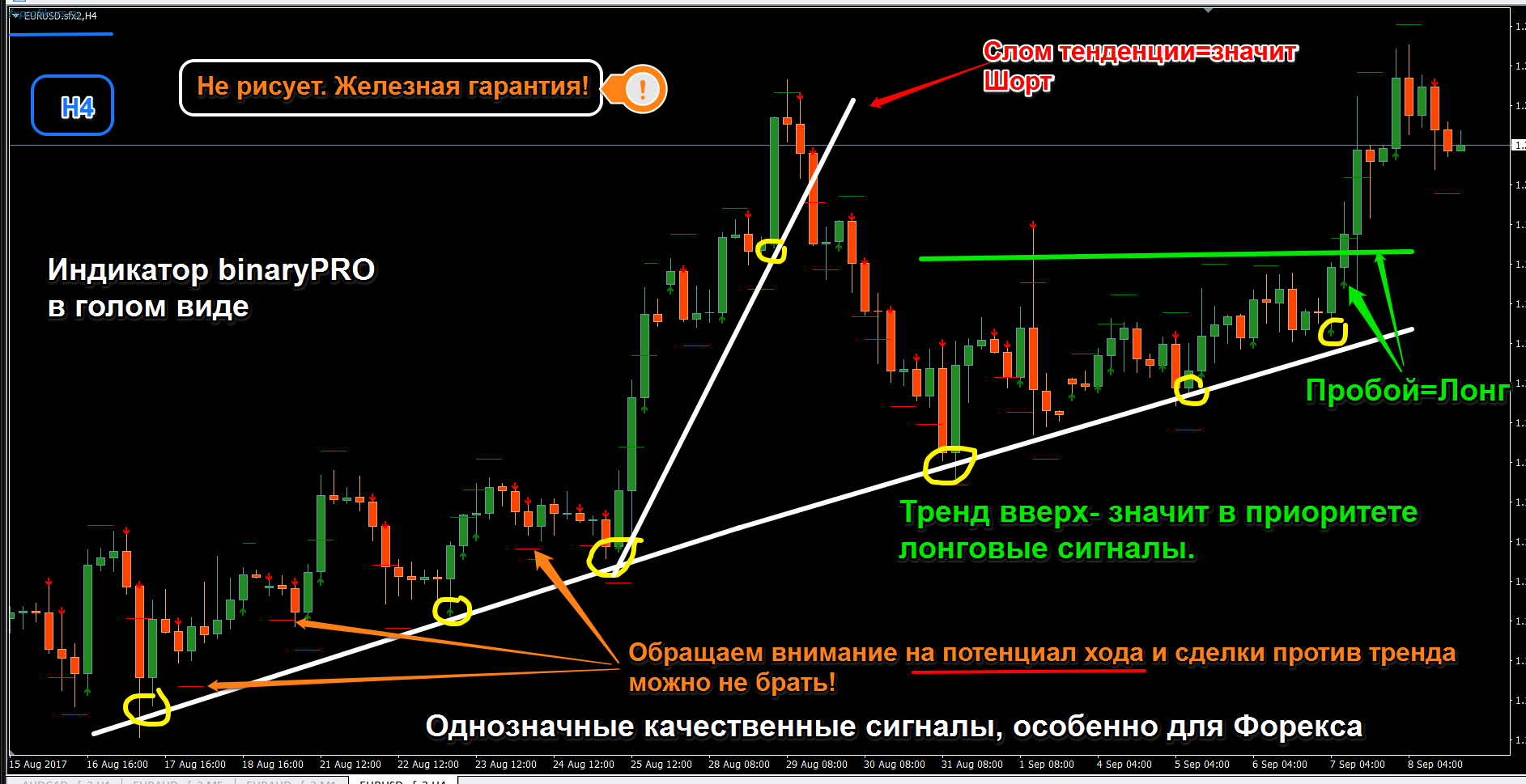 Binary options training courses free signals software download